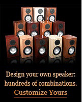 Customize Your speakers!  100s of speaker finishes to choose from.